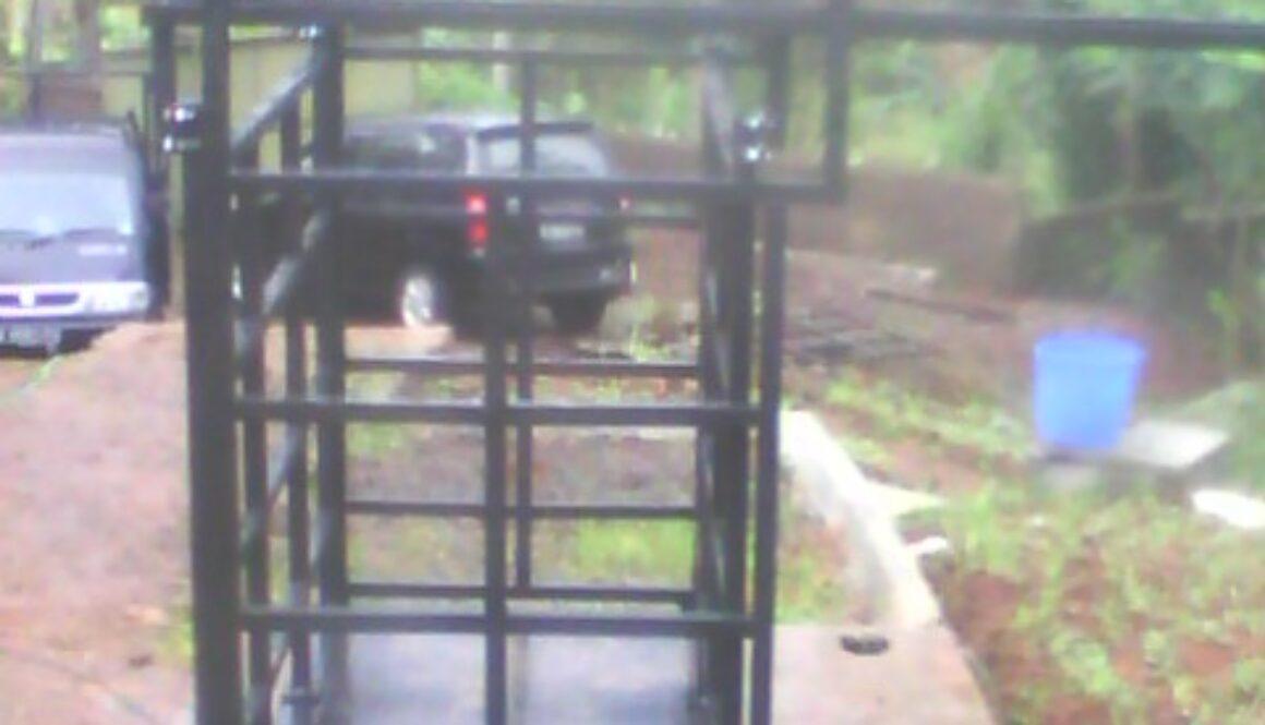 timbangan hewan dengan pagar 2